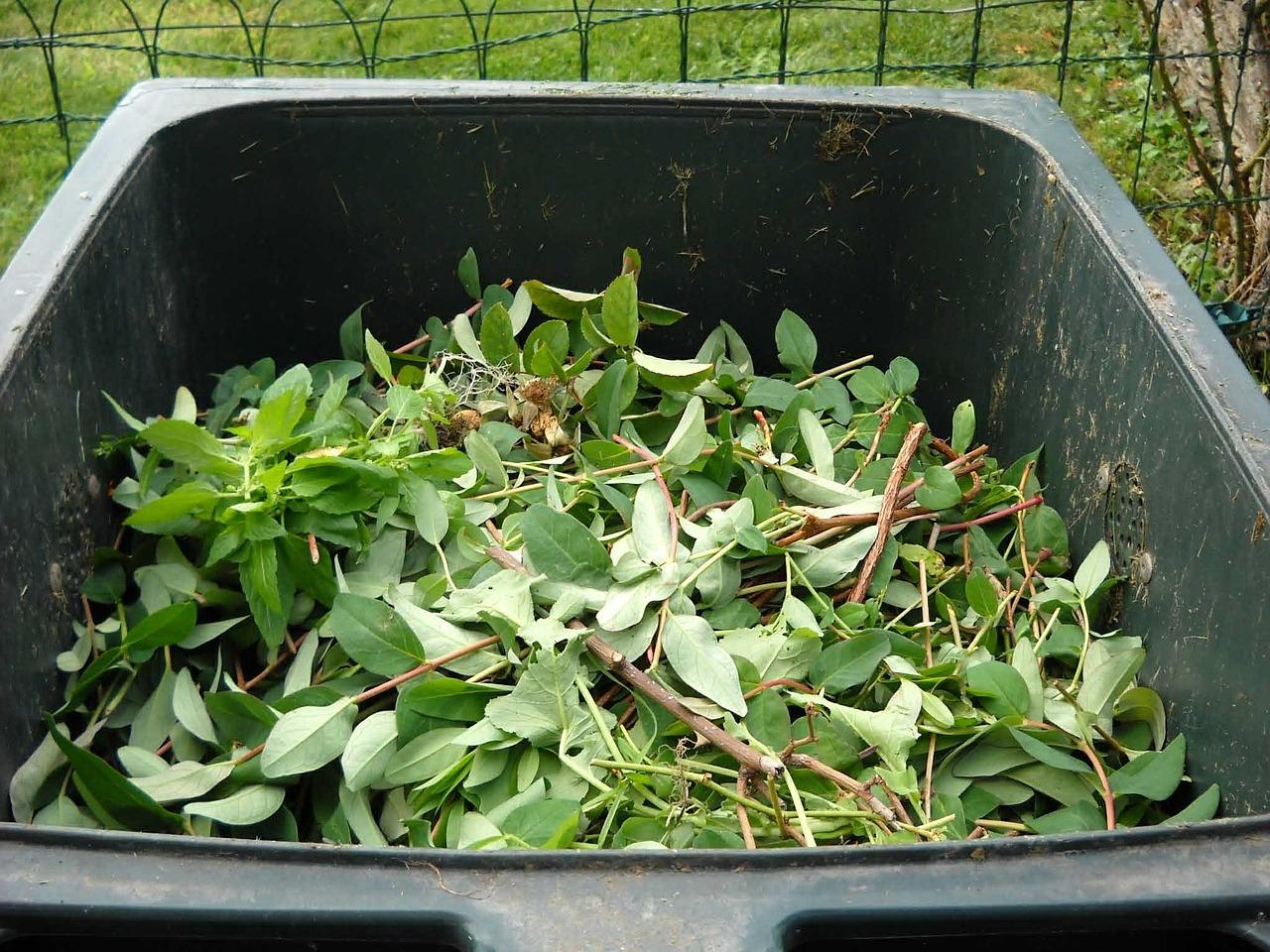 green-waste-486011_1280